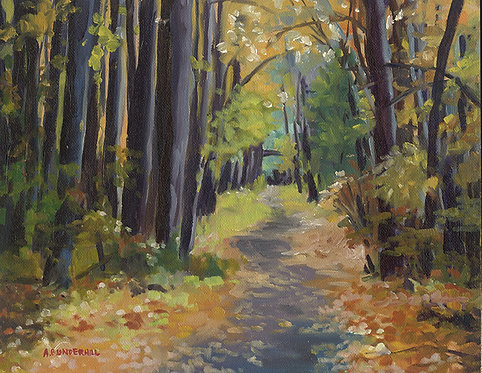 Airline Trail in Fall