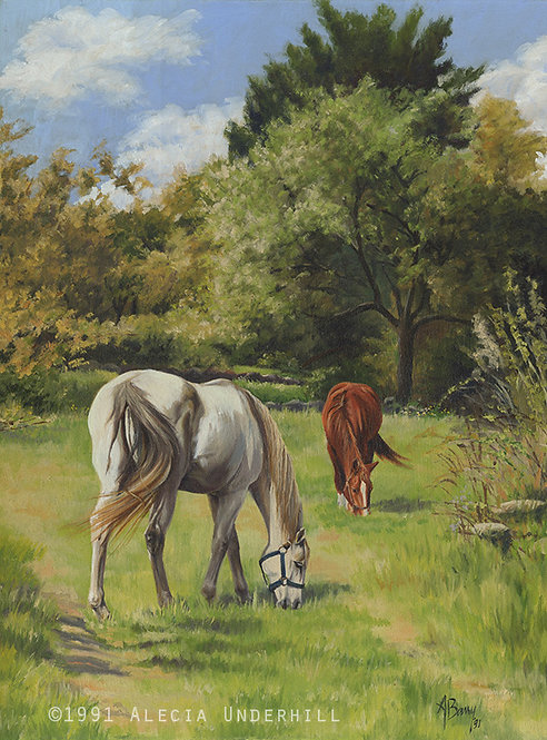 Two Horses in a Rhode Island Landscape