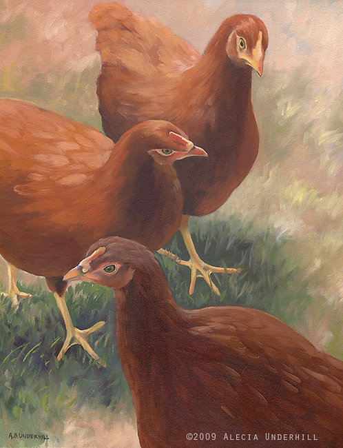Three Red Hens