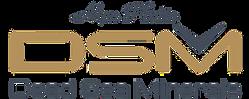 LogoDSMBlue.png