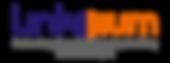 logo-linksium.png