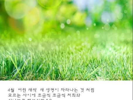 19년 4월 환경연대 소식지