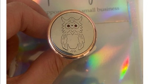 Aroma Car Freshener - Owl