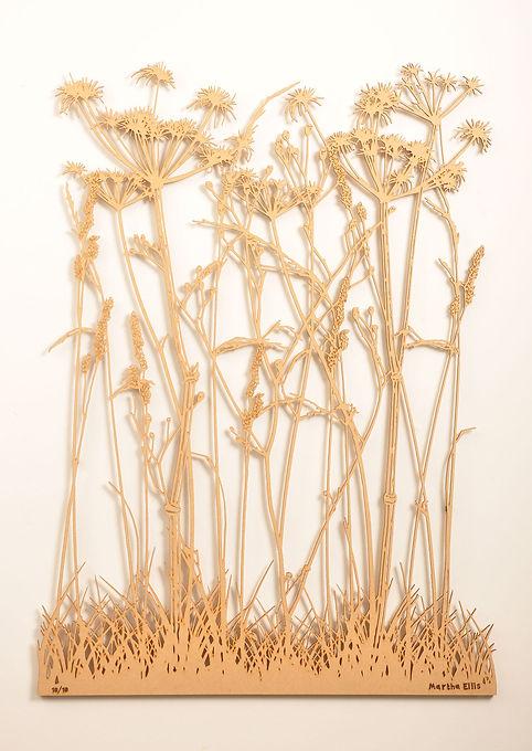 Winter_Grass_1.jpg