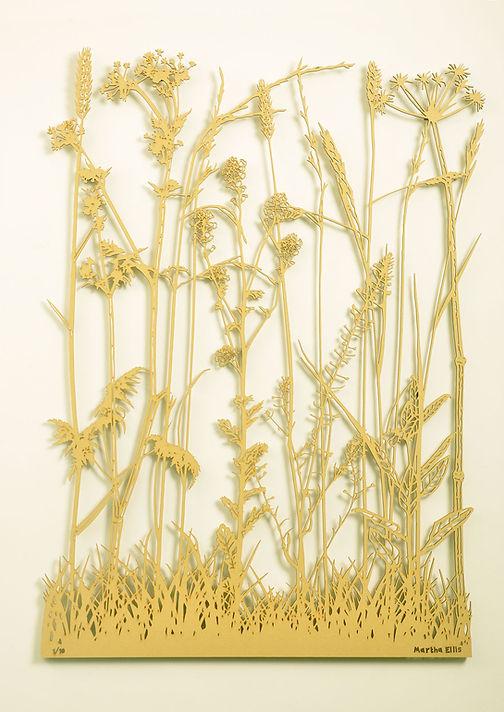Spring_Grass_1.jpg