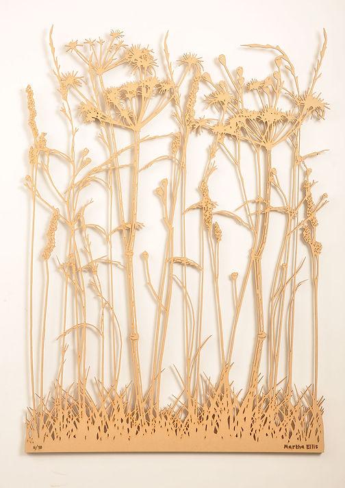 Winter_Grass_2.jpg