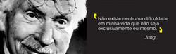 Conheça mais sobre C.G. Jung