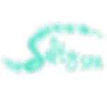 Transparent Logo for FB-teal.png