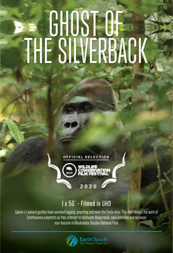Ghost of the Silverback - poster