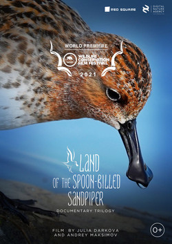 Land of the Spoon-Billed Sandpiper - poster