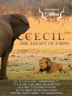 Cecil - Legacy of a King - WCFF poster