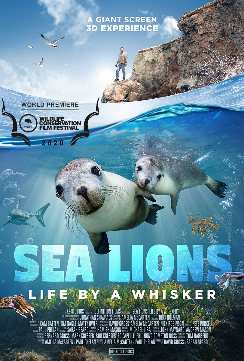 SeaLions - poster