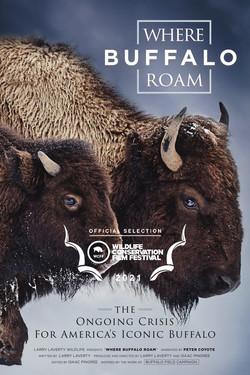 Where the Buffalo Roam - WCFF poster