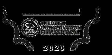Wild Lands Wild Horses - 2020 WCFF.png