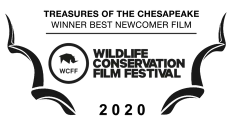 WCFF Award Laurel - Treasures.png