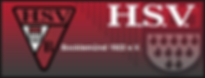 hsv_banner.png