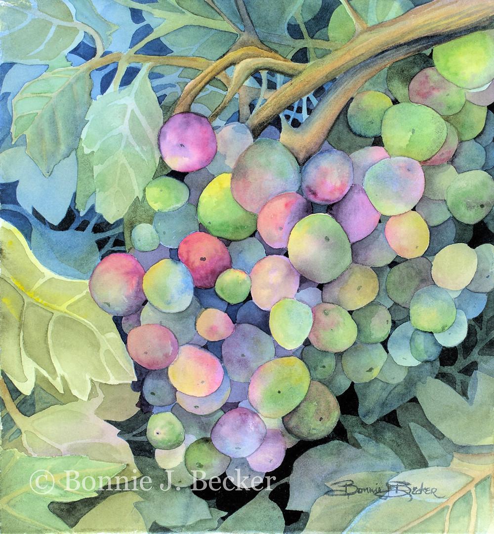 C+BB-036+Grapes+Again.jpg