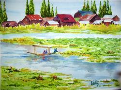 Serenading the Dal lake