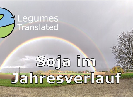 Soya: in the course of a year - Fourth Legumes Translated video published