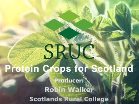 Protein Crops for Scotland - Legumes Translated twelfth video published
