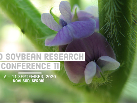 POSTPONED: World Soybean Research Conference 11 will take  place in September 2021 in Novi Sad