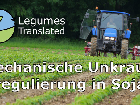 Mechanical weed control in soya: Third Legumes Translated video published