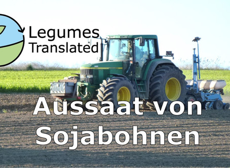 Sowing of soybeans - Fifth Legumes Translated video published