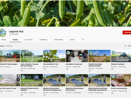 Legume Hub YouTube channel - Subscribe now!