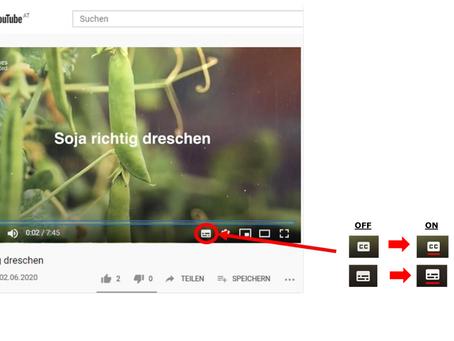 Activating subtitles on Legume Hub YouTube videos