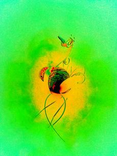 Psychedelic Bird