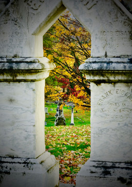 Looking at Eternity  #45  Carol Foster  Cemeteries are lovely places to explore. The monuments are windows to the identity of those buried in the graves. The arch-style monuments seem to be open windows framing the area around the burial sites, showing the changing seasons as they focus on eternal resting places.  NFS