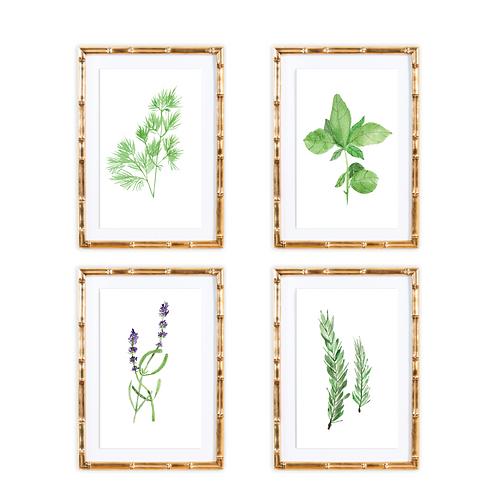 Herb Print Set
