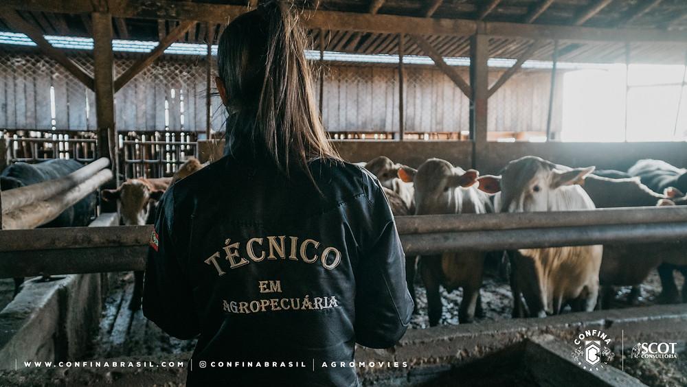técnico pecuária no confina brasil