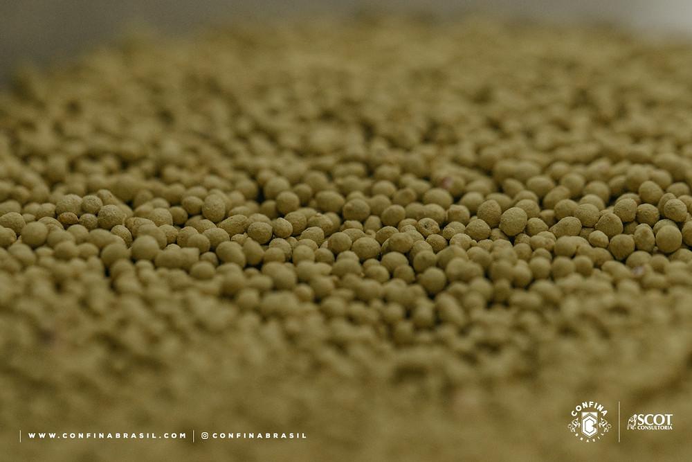 confina brasil - sementes incrustadas barenbrug do brasil