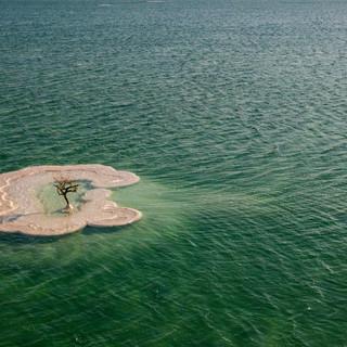 Dead_Sea-0861.JPG