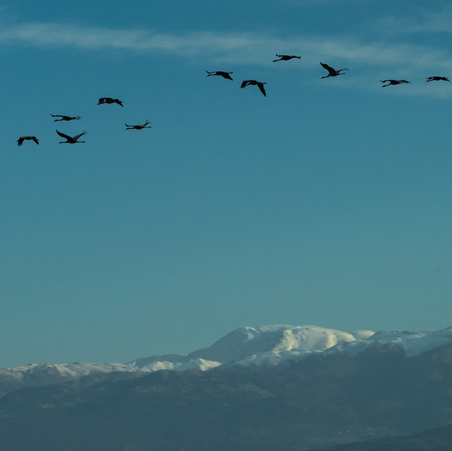 Hermon mountain, Israel
