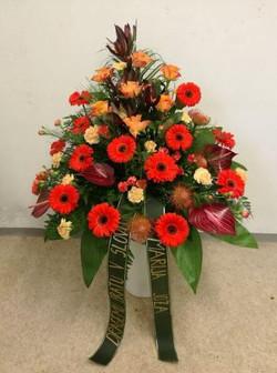 cvetlicarstvo ales aranzma 6