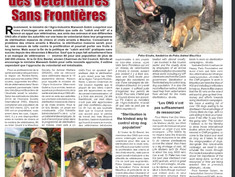 CNR || We need overseas qualified vets