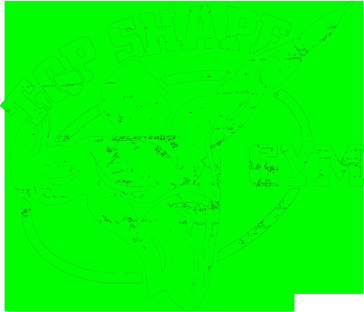 Topshape Gym