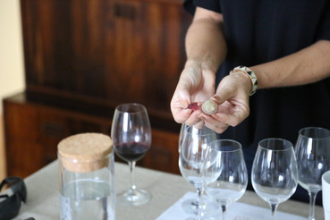 Sommelier | Teresa Gomes | The Wine Flat | Experience