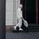 Thumbnail: Notabag – Grey