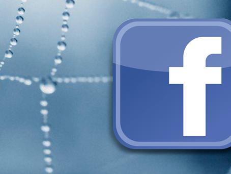 Não caia no golpe da 'Aranha no Facebook'.