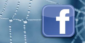 aranha facebook