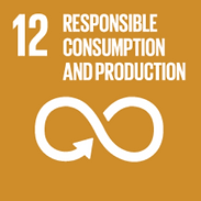 READY SDGs responsible productions and consumption