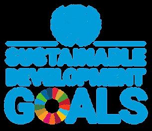 READY sustainable development goals SDGs