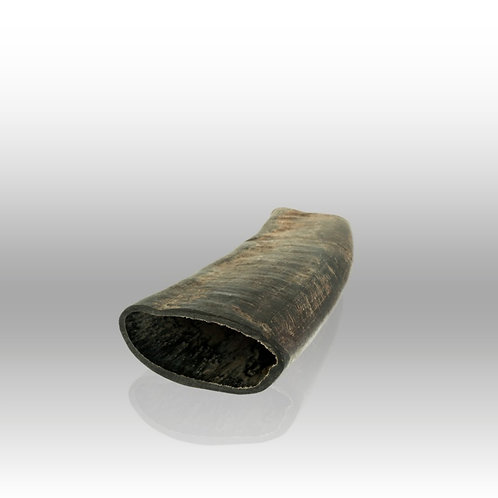Buffalo Horn - sold individually