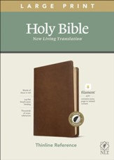NLT Large Print Thin Reference Bible