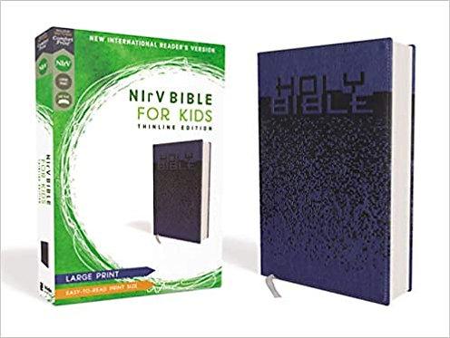 NiRV Bible for Kids- Large Print