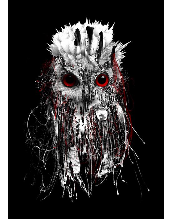 OWL - RED EYE