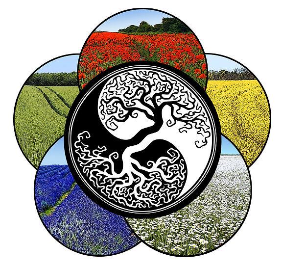 p3-Bon logo1.jpg